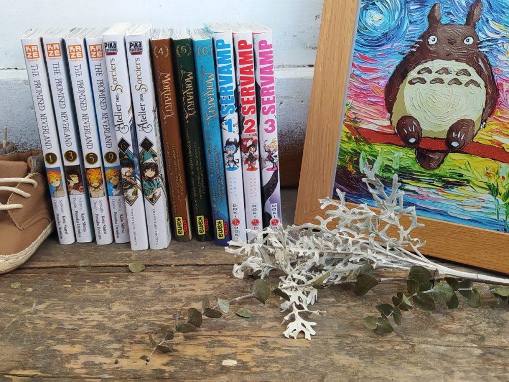 sélection manga